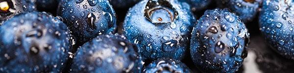 aatl-blueberries.jpg