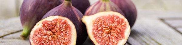 aatl-figs.jpg