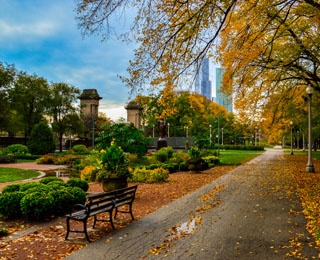 walking path with park bench in fall
